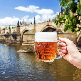 prague-czech-beer-and-pub-evening-tour-in-prague-535726
