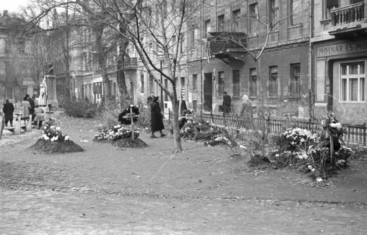 Sírok a Károlyi kertben Forrás: Fortepan/ Nagy Gyula