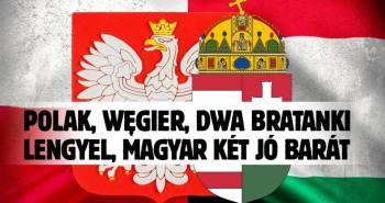 lengyel magyar
